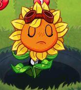 Solar Flare hurt more