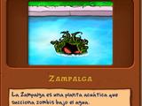 Zampalga