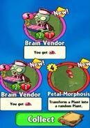 Double Brain Vendors