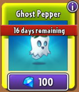 Ghost Pepper Store New