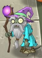 Wizard costume in spring