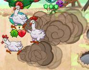 Close up of Chickening