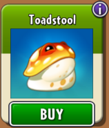 Toadstool Store New