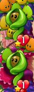 Two Seedlings