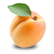 Apricot PNG12652.png