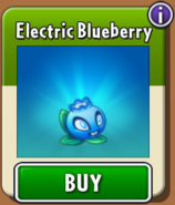 Electric Blueberry Store New