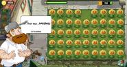 P'sH-D4 Sunflower Lawn!