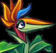 Bird of Paradise cardface