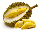 Durian(real).jpg