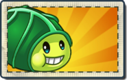 Zoybean Pod Boosted Seed Packet