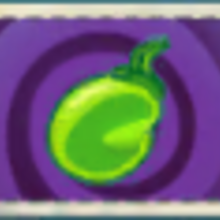 Plant Food Seed Packet.PNG