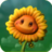 SunflowerGW2.png