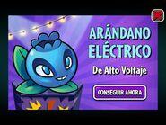 Arandano electrico publicidad