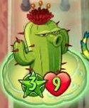 CactusonPumpkinShell