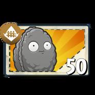 SP-F-Sun50-I-BoostWN