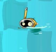 Snorkelhead