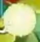 Citron proj