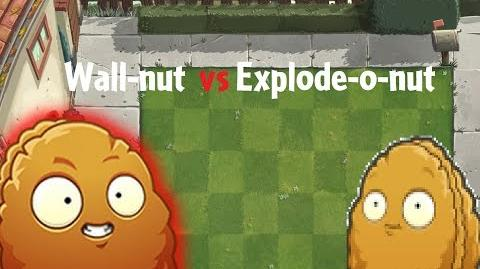 PvZ 2 Wall-nut vs Explode-o-nut