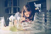 EPA GULF BREEZE LABORATORY, FISHERY BIOLOGIST CONDUCTS STUDIES OF SHRIMP AND CRAB LARVAE.jpg