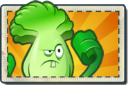 Bonk Choy Boosted Seed Packet