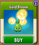 Gold Bloom Store New