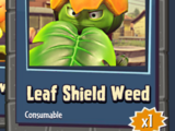 Leaf Shield Weed