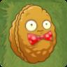 Wallnut C Costume2