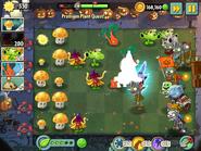 Witch Hazel Premium Plant Quest