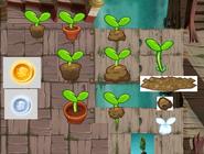 Sproutconcept