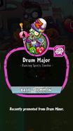 Drum Major Description