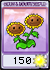 TwinSunflowerSeedPacket