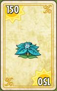 Boingsetta Endless Zone Card Level 1-3