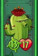 Cactus Fed by 4 Fertilizers