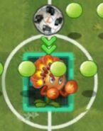 Footballoverplant