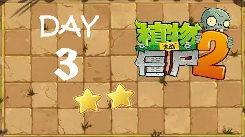Kung Fu Day 3 SS