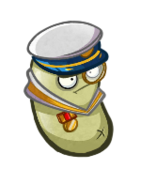 Another HD Admiral Navy Bean
