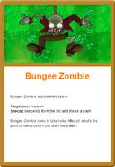 Bungee Online