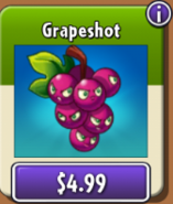 Grapeshot in the NEW shop