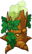 HD Poison Oak