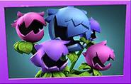 Hydrangea PvZ3 seed packet