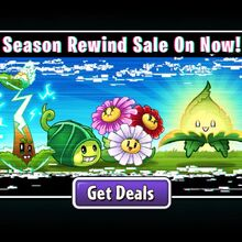 Season Rewind Sale.jpg