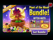 Plant of the Week Bundle - Witch Hazel