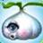 Garlic DroneGW1.png