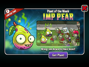 Imp Pear Plant of the Week