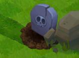 Grave (PvZA)