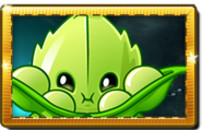 Appease-mint New Premium Seed Packet
