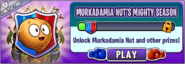 Murkadamia Nut's Mighty Season