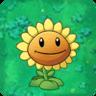 SunflowerO.png