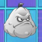 Squash Ghost
