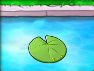 Lily-Pad.png